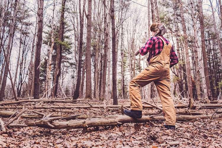 wood_lumberjack